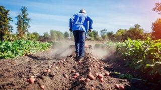 Los agricultores ganaron el 9% más en abril y sus costes subieron el 8,7%