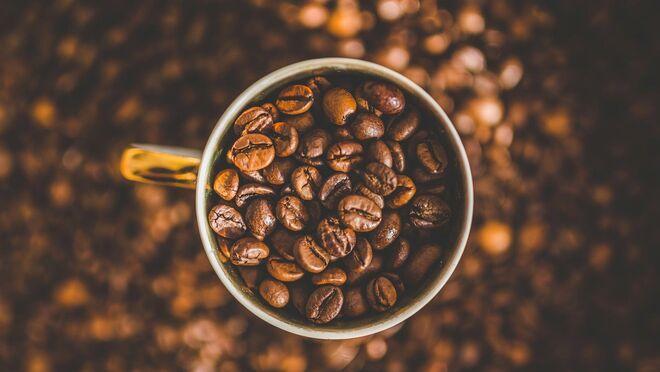 Cómo distinguir entre los mejores cafés naturales