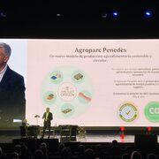 Ametller: transformar el mundo (y crecer) vendiendo acelgas