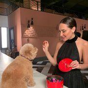 Nestlé presenta su nueva Caja Roja diseñada por Tamara Falcó