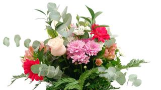 El sector de las flores prevé volver a las ventas prepandemia en el Día de Todos los Santos